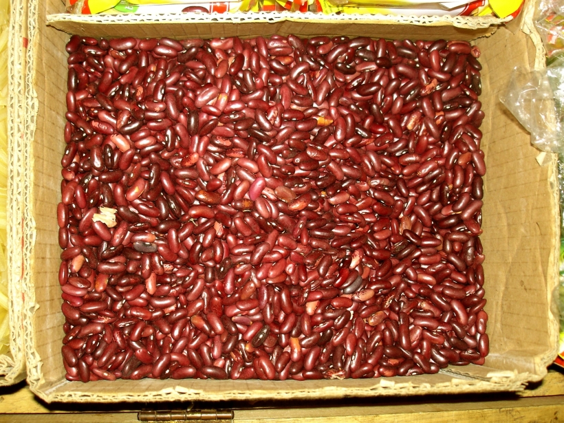 Kidney_beans_(Phaseolus_vulgaris)_marketed_Baubau.jpg